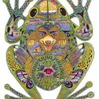 Frog Rubber Stamp by Sue Coccia