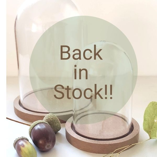Domes now back in stock