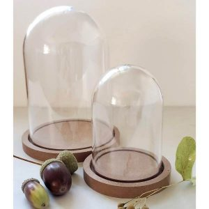 Clear Plastic Dome with Wood Base