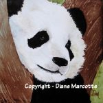 diane-marcotte-panda-4-2