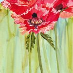 diane-marcotte-poppies-4-2